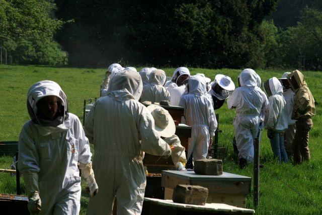 Catalogue thématique des conférenciers apicoles