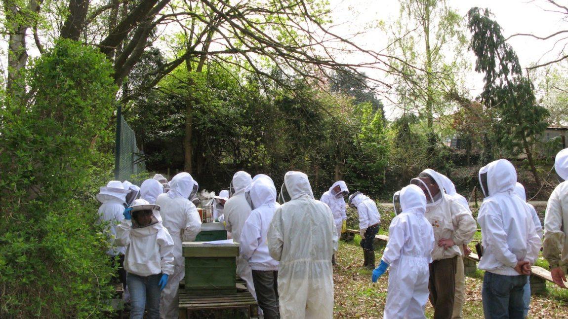Réunion des ruchers écoles 2019